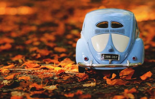 Картинка машина, авто, осень, листья, природа, фон, листва, игрушка, номер, Volkswagen, автомобиль, машинка, вид сзади, голубая, …