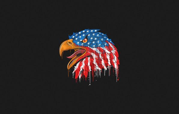 Картинка Цвет, Птица, Стиль, Флаг, Орел, Голова, Клюв, США, Eagle, Арт, Art, Style, Color, Head, Flag, …