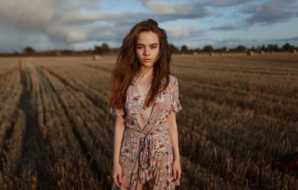 Картинка девушка, в поле, Aleks Five