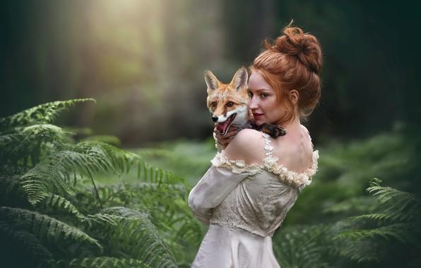 Картинка лес, девушка, лиса