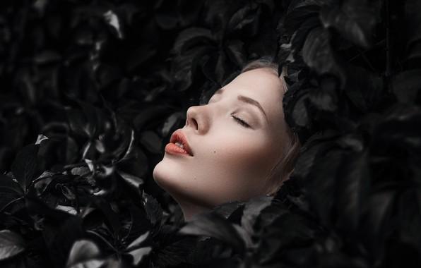Картинка листья, лицо, настроение, губки, закрытые глаза, Даша, Дмитрий Александров