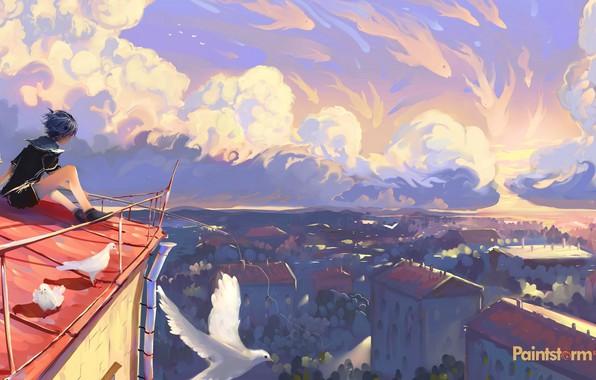Картинка небо, мальчик, голуби, сидит, вид сверху, art, на крыше, матроска, крыши домов, летний день, панорама …