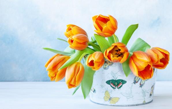 Картинка цветы, коробка, букет, тбльпны