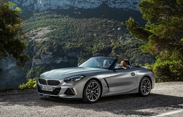 Картинка дорога, горы, серый, растительность, BMW, родстер, BMW Z4, M40i, Z4, 2019, G29