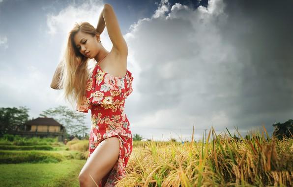 Картинка лето, небо, девушка