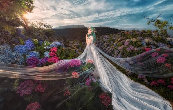 Картинка лето, небо, девушка, облака, цветы, природа, фон, холмы, белое, голубое, волосы, вечер, сад, платье, красавица, …