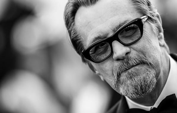 Картинка взгляд, поза, очки, актёр, черно белая, Gary Oldman, кинорежиссёр, Гэри Олдмен