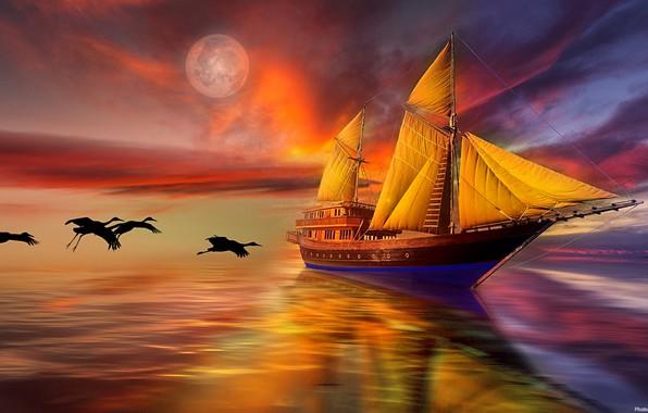 Картинка море, небо, птицы, парусник