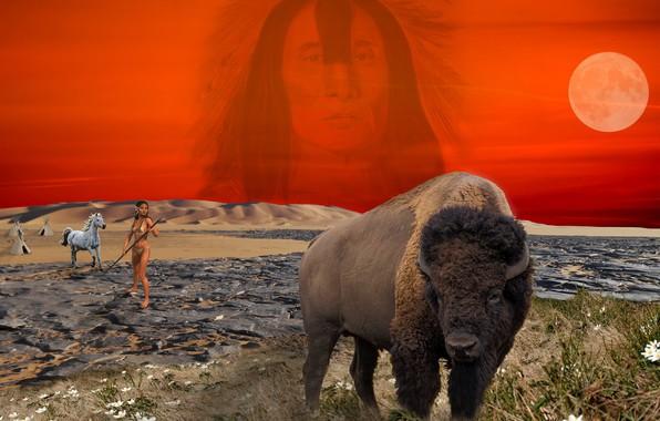 Картинка фотошоп, прерия, индеец, бизон, индеанка, стойбище