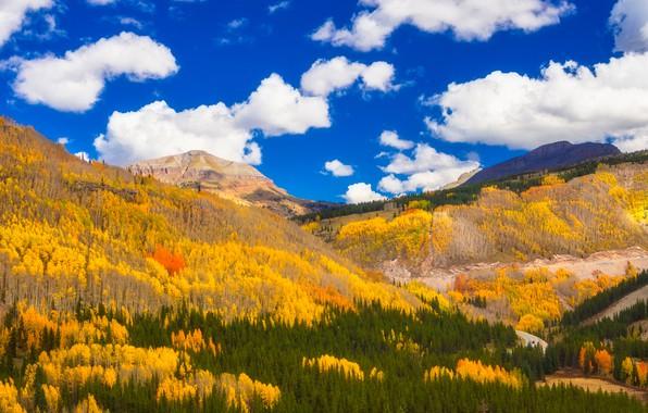 Картинка осень, лес, облака, горы, Колорадо