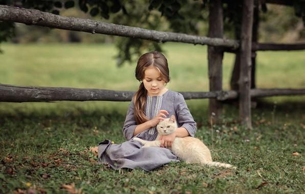 Картинка кошка, лето, кот, природа, животное, платье, девочка, ребёнок, Виктория Дубровская