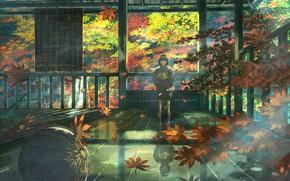 Картинка Дзасики-вараси, мячик, осень, ребенок