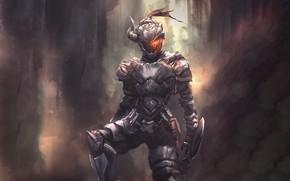 Картинка доспехи, воин, шлем, рыцарь, Goblin Slayer