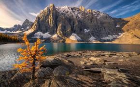 Картинка Alberta, Canada, British Columbia