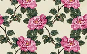 Картинка цветы, фон, текстура, Flowers, Roses, Vintage, Background