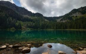 Картинка лес, горы, озеро, камни, водоем