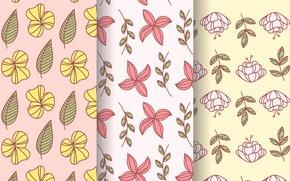 Картинка цветы, фон, текстура, Flower, Pattern