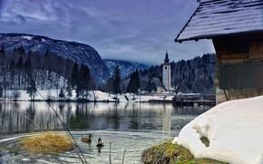 Картинка зима, облака, пейзаж, птицы, мост, природа, озеро, утки, церковь, леса, Словения, Бохинское озеро, Бохинь