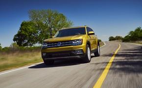 Картинка дорога, жёлтый, дерево, Volkswagen, Atlas, 2017