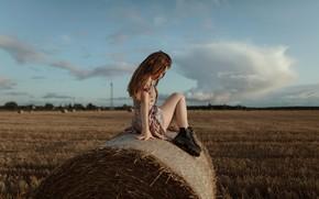 Картинка поле, девушка, сено, ножки, на сене, Aleks Five