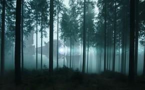 Картинка лес, свет, деревья, ночь, туман, фантастика, корабль, НЛО, утро, сосны, сумерки, прожектор, кроны, космический корабль, …