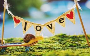 Картинка лето, трава, макро, свет, любовь, надпись, столбы, улитка, позитив, плакат, сердечки, ткань, вывеска, прогулка, хорошее …