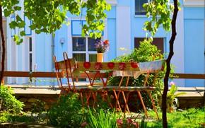 Картинка Сад, Двор, Garden