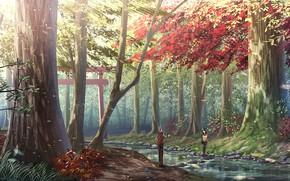 Картинка камни, двое, солнечный день, осенний лес, тории, лесной ручей, парень с девушкой
