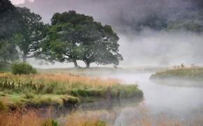 Картинка осень, туман, река