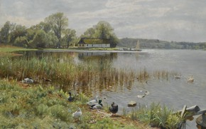 Обои 1937, Утки у пруда, Peder Mørk Mønsted, Петер Мёрк Мёнстед, датский живописец, Danish realist painter