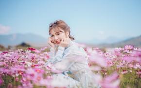 Картинка поле, взгляд, девушка, цветы, лицо, улыбка, руки, азиатка, космея