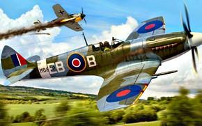 Картинка деревья, Spitfire, Supermarine Spitfire Mk.XII, перехват, Würger, Fw.190A, на малой высоте, Туманный Альбион