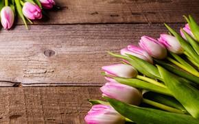 Картинка цветы, букет, тюльпаны, розовые, fresh, wood, pink, flowers, beautiful, romantic, tulips, spring