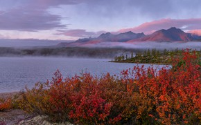 Картинка деревья, пейзаж, горы, природа, туман, озеро, растительность, утро, кусты, берега, Владимир Рябков, Колыма, озеро Джека …