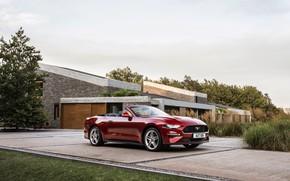 Картинка газон, здание, Ford, стоянка, кабриолет, 2018, тёмно-красный, Mustang Convertible