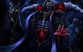 Картинка скелет, мантия, Overlord, Владыка