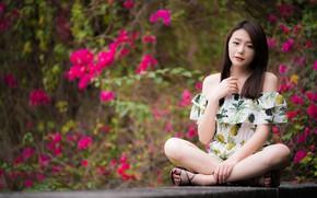 Картинка поза, сидит, девушка, азиатка