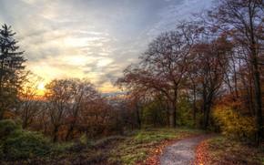 Картинка осень, небо, природа