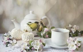 Картинка цветы, чай, композиция, зефир
