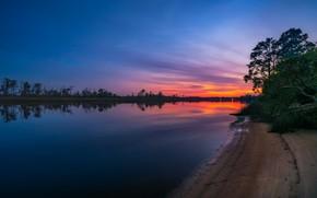 Картинка деревья, закат, отражение, берег, вечер, сумерки, водоем