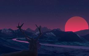 Картинка закат, олень, рога