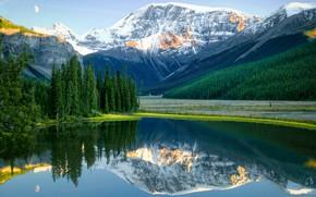 Обои деревья, горы, озеро