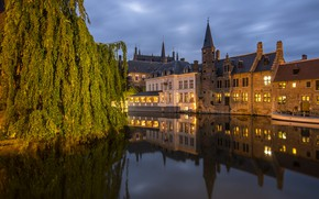 Картинка ветки, город, отражение, дерево, здания, дома, вечер, освещение, канал, Бельгия, Брюгге