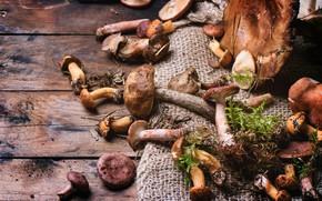 Картинка грибы, доски, много, разные, мешковина, добыча грибника, съедобные