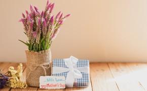 Картинка цветы, подарок, паздник