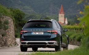 Картинка 4x4, задняя часть, Škoda, универсал, Skoda, Scout, тёмно-синий, Superb, 2020