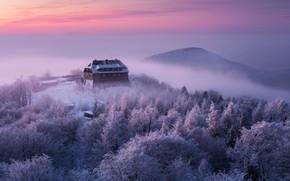 Картинка зима, иней, снег, закат, вид, Martin Rak