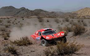 Картинка красный, движение, пустыня, rally, ралли, кустарник, Buggy, Fast&Speed