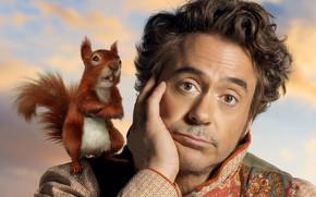 Картинка комедия, Craig Robinson, Крэйг Робинсон, 2020, Dolittle, Robert John Downey Jr, fantasy adventure comedy film, …