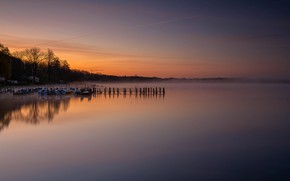 Картинка деревья, туман, озеро, берег, лодки, утро, Германия, причал, Zwischenahner Meer